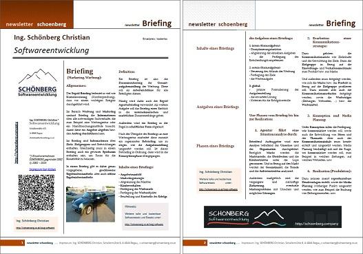 Ebook Briefing
