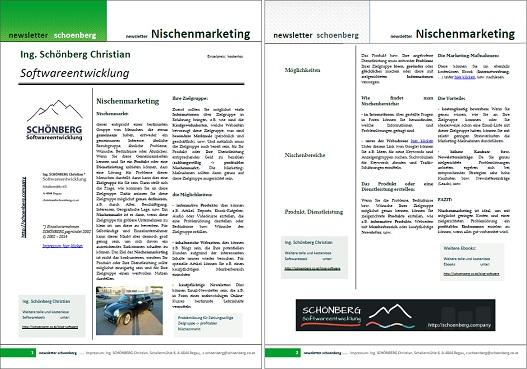 Ebook Nischenmarketing