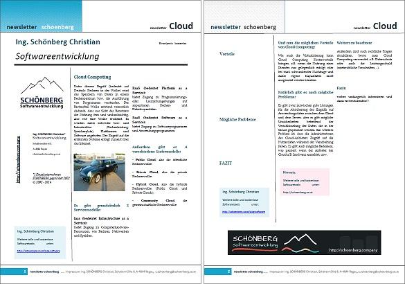 Schoenberg - Programmierauftrag, Programmierer - Ebook zum Thema Cloud Computing