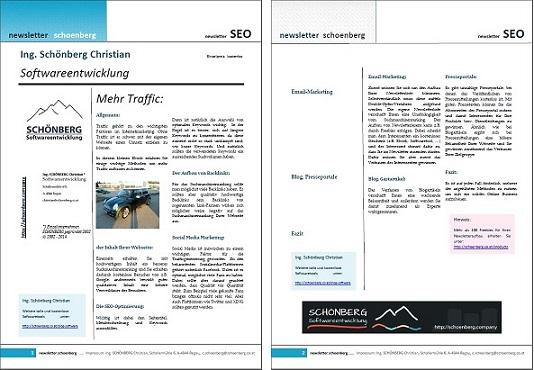 Schoenberg - Programmierauftrag, Programmierer - Ebook mit Traffic