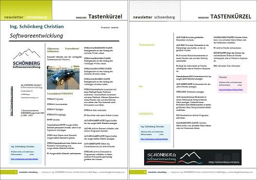 Schoenberg - Programmierauftrag, Programmierer - Ebook Tastenkürzel Windows, Word, Excel und Powerpoint