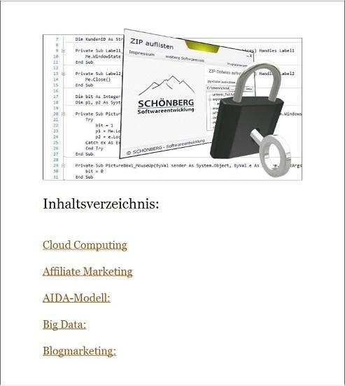 Schoenberg - Programmierauftrag, Programmierer - Ebook Emailmarketing, usw.